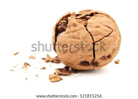 walnuts on white background - stock photo