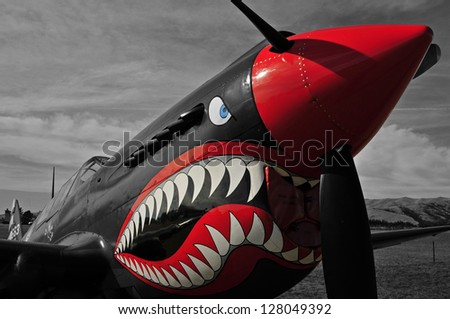 War bird Kittyhawk - stock photo