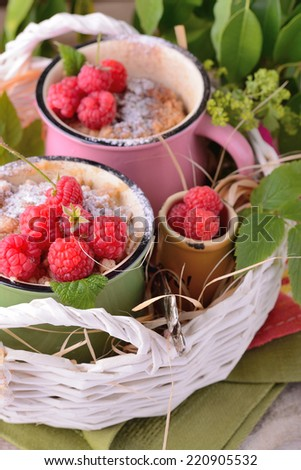 Warm chocolate cake with raspberries in a mug sprinkled icing sugar on a napkin - stock photo