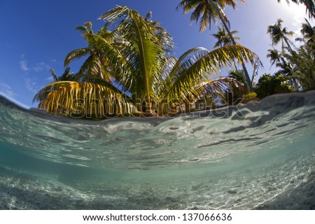 Warm, clear sea water bathes a sandy island in French Polynesia.  This motu, covered by coconut palms, has formed just off the island of Raiatea. - stock photo
