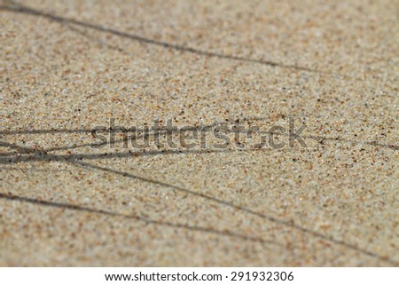 Warm sand at the sea. - stock photo