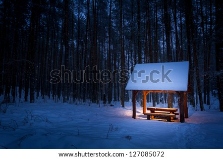 Warm shelter in a cold winter forest - stock photo