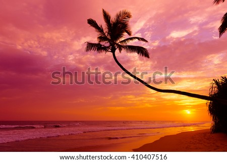 Warm vibrant tropical sunset over the ocean with coconut palm tree silhouette at tranquil summer beach on island resort and sun reflection in waves - stock photo