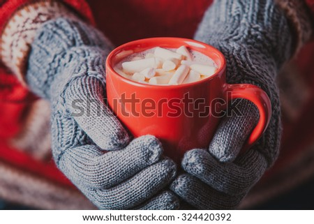 Warm winter photo which hands in knitted gloves holding a mug cocoa with marshmallow - stock photo