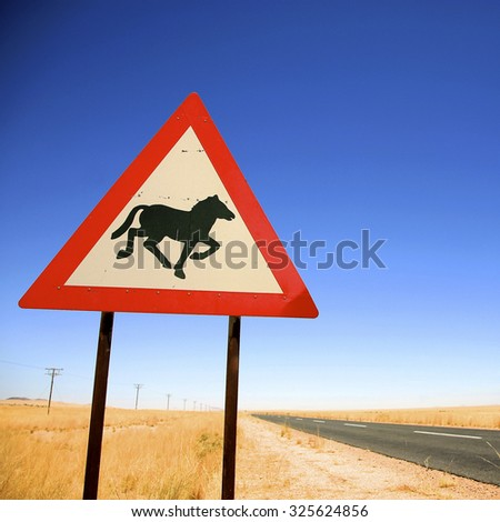 Warning sign on the road preventing from Wild horses crossings in Namibia on the way to Luderitz against a blue sky. (Selective focus) - stock photo