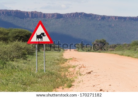 Warthog Road Crossing Sign - Danger, Warning Road Sign from Africa - Avoid collision with domestic cows or cattle as they might wonder onto the road.