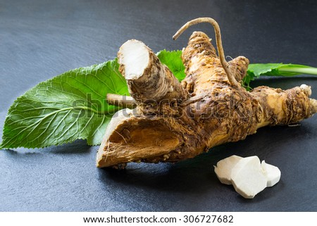 Washed horseradish root, peeled slices and green leaf on a slate board. It is used in food and medicinal purposes. Selective focus - stock photo