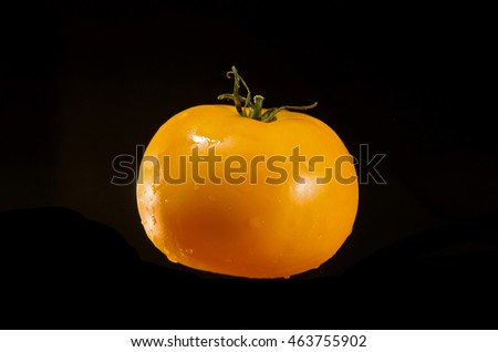 Washed yellow tomato in drops of water on a black background.