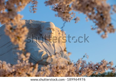 WASHINGTON DC - APRIL 10: The monument to Dr Martin Luther King in Washington DC surrounded by cherry blossoms on April 10, 2014. The memorial opened to the public on August 22, 2011. - stock photo