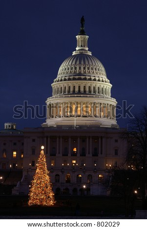 Washington DC Capital Christmas Tree Vertical - stock photo