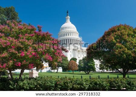 Washington DC- US Capitol Building - stock photo