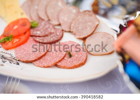 wasp eating meat on festive table - stock photo