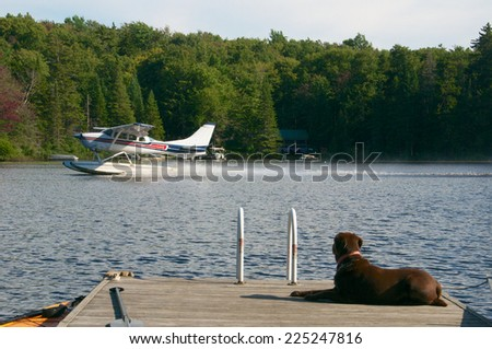Watching the seaplane take off on the lake - stock photo