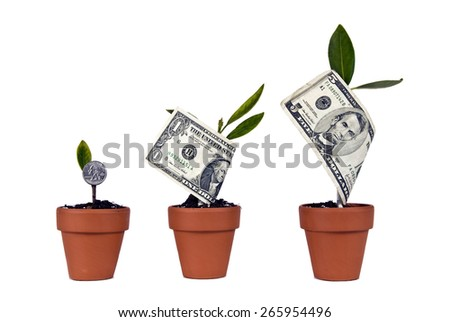 Watching Your Money (Fictitious) Grow In Flower Pots/ Watch Your Money Grow - stock photo