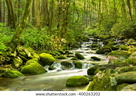 Water cascades over moss covered rocks, in Great Smoky National Park. - stock photo