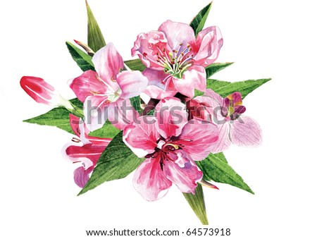 Water-colour arrangement  of the spring flowers isolated on the white background - stock photo