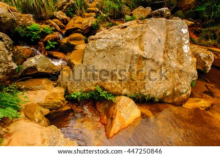 Water creek in Madagascar, Africa - stock photo