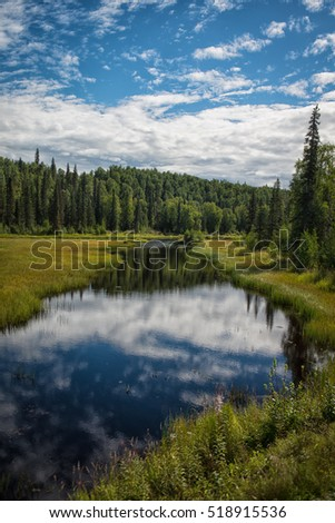 Water creek in Talkeetna, Alaska on a bright summer day