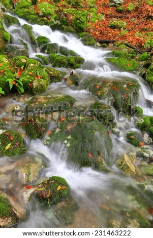 Water creek spread amongst rocks and green moss in autumn - stock photo
