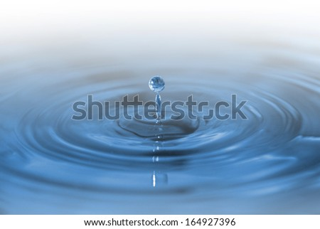 Water drop causing a ripple on the water.