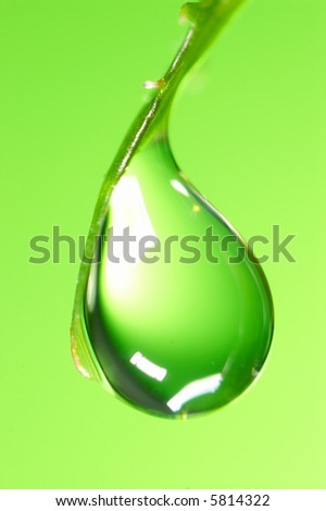 Water drop on the fresh green shoot. Super Macro - stock photo