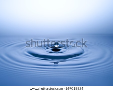 water, drop, water drop - stock photo