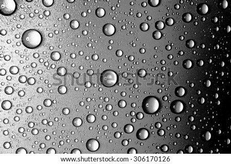 Water drops close up. Abstract Black and white background of waterdrops, droplets closeup - stock photo