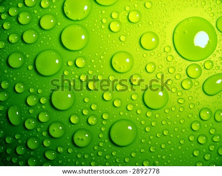 water-drops on green - stock photo