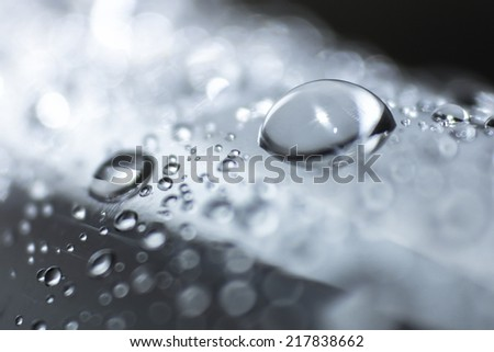 Water drops on metallic - stock photo