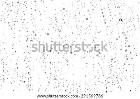 Water drops on the white background - stock photo