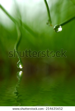 water drops with reflection on water - stock photo