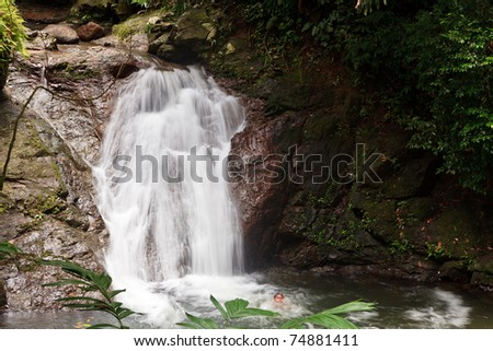 Water fall in a tropical rain forest