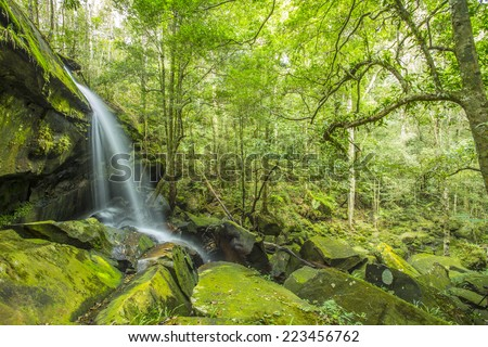 Water fall in the nature  - stock photo