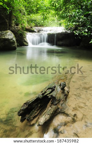 Water fall , log in the foreground lush greens - stock photo