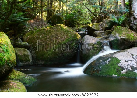 Water falls softly over moss-covered boulders, in lush temperate rainforest.  Yarra Ranges, Victoria, Australia. - stock photo