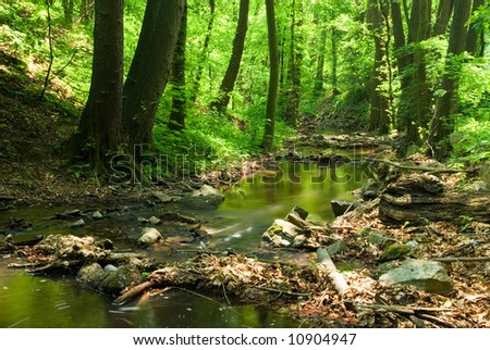 Water flows along a mountain stream (green toned) - stock photo