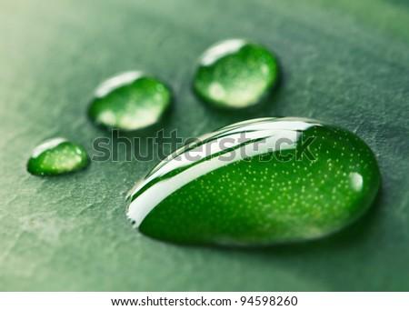 Water footprint drops on a leaf. Macro. - stock photo