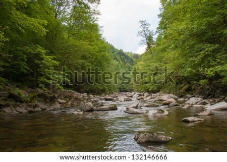 water in forest with stones - stock photo