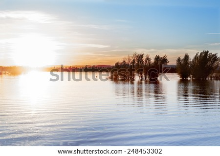 Water landscape and dry trees.Lake and sunset - stock photo
