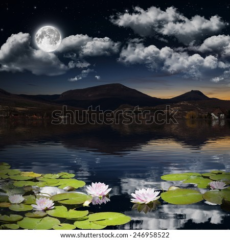 Water lily in the night.  Elements of this image furnished by NASA. - stock photo