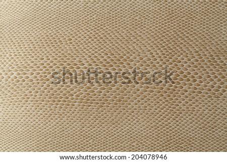 Water lizard skin texture - stock photo