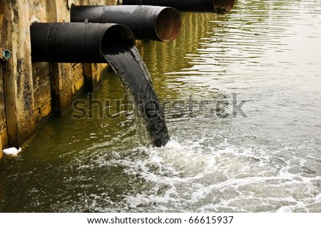 india water pollution essay