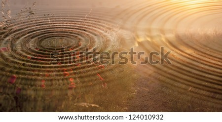 water Rings - stock photo