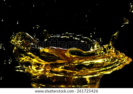 water splash on black background - insect - stock photo