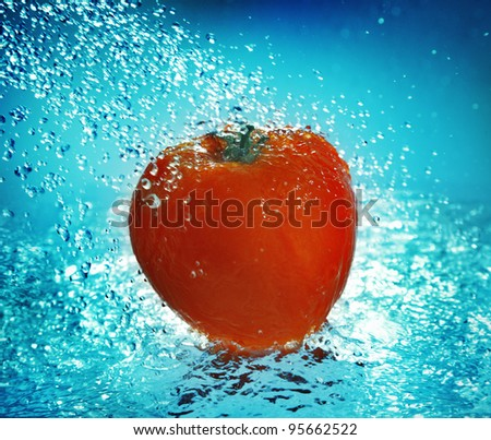 Water splash on tomato - stock photo