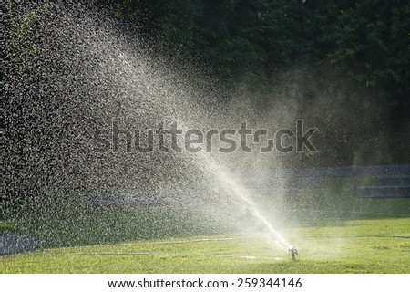 water spray on green grass - stock photo