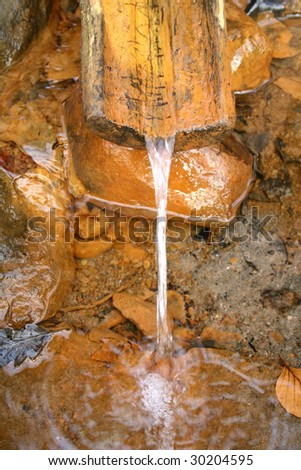 Water spring - stock photo