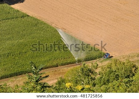 Water sprinkler installation in a field of maize