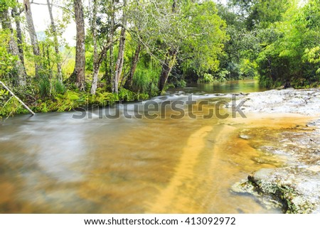Water stream running in mossy forest - stock photo
