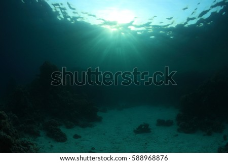 Water surface and coral reef with sunlight underwater in the ocean